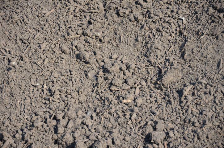 Compost |Gezeefde compost 30mm voor het gebruik in de agrarische sector (voeding voor uw landbouwgrond).