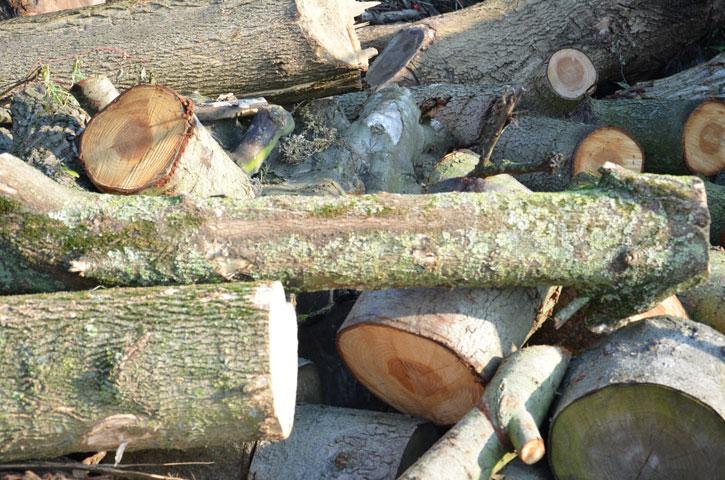 Hout | Met onze houtklover maken wij hout klaar om bruikbaar te maken in de open haard. Neem contact op met de groenrecycling indien u interesse heeft.